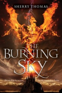the burning sky book
